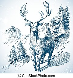 montagna, schizzo, cervo, albero, foresta pino
