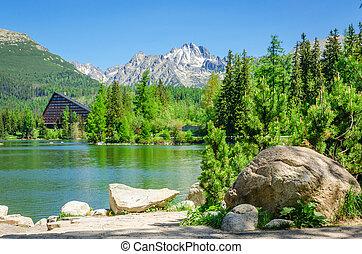 montagna,  tatras,  pleso, lago, Slovacchia,  strbske