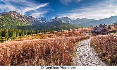 montagna, tatras, polonia, meraviglioso, percorso, valle