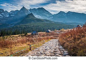 montagna, tatras, polonia, percorso, valle, pietroso