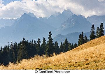 montagna, tatry, paesaggio, polonia
