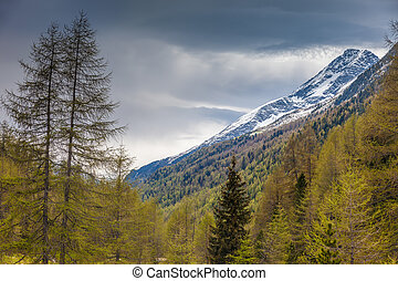 montagna, tempo piovoso, valle
