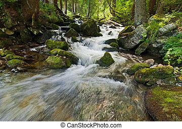 montagne, été, forêt, écoulement, paysage rivière