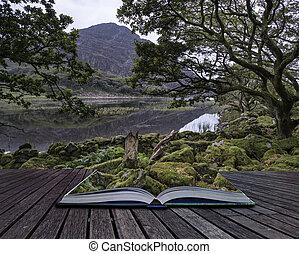 montagne, été, image, reflété, lac, encore, mo, paysage