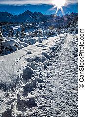montagne, alba, inverno, percorso