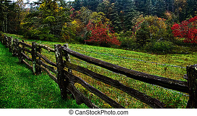 montagne, autumng, fumoso, stagione