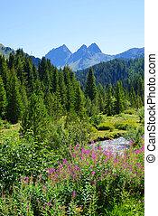 montagne, beau, ville, suisse, bergun., alps., paysage