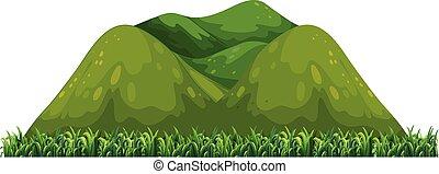 montagne, blanc, vert, isolé, fond