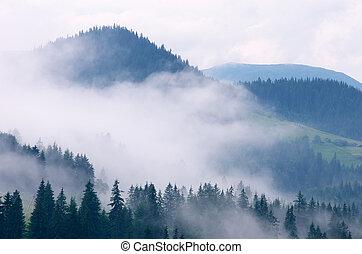montagne, brouillard