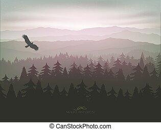 montagne, brouillard, forêt, levers de soleil