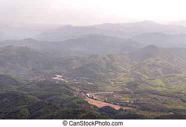 montagne, brouillard, forêt, vallée, matin