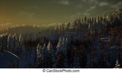 montagne, brouillard, neige