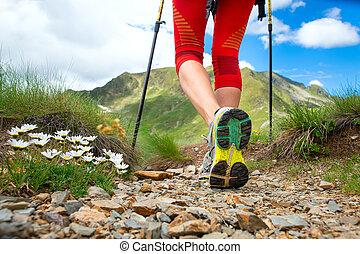 montagne, camminare, gambe, dettaglio, pratiche, nordico, ragazza, fiori
