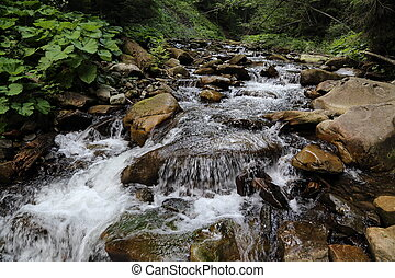 montagne, carpathian