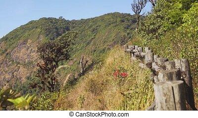 montagne, chiang, fence., buissons, mai, pente, thaïlande