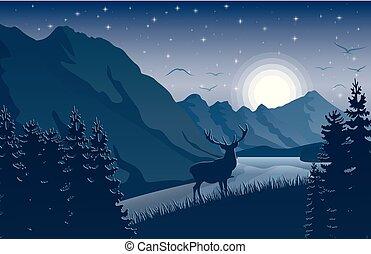 montagne, cielo, cervo, lago, stelle, notte, paesaggio
