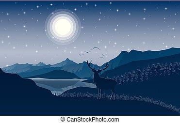 montagne, colline, cielo, cervo, stelle, notte, paesaggio