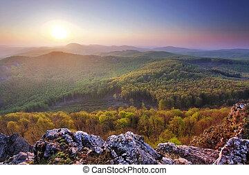 montagne, coucher soleil, forêt