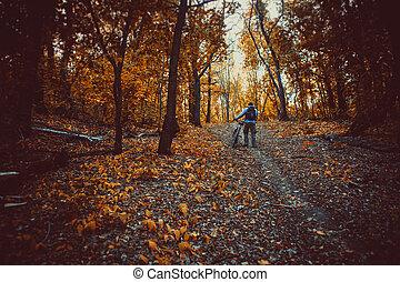 montagne, coup, danemark, volet, course, forêt, barbouillage, vélo, vitesse, mouvement, réaliser, bas