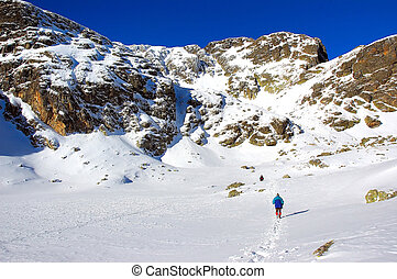 montagne, ensoleillé, hiver