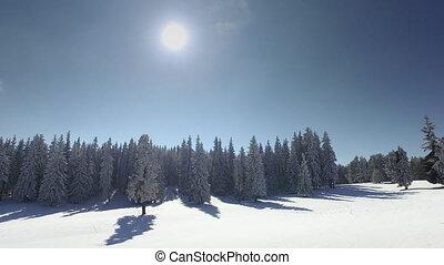 montagne, ensoleillé, paysage hiver