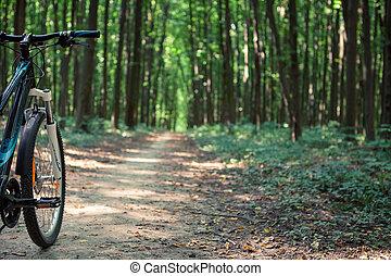 montagne faisant vélo, bas colline, descendre, jeûne, sur,...
