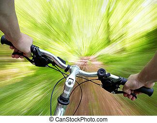 montagne faisant vélo, dans, les, forêt
