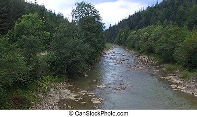 montagne, forêt verte, écoulement, par, rivière