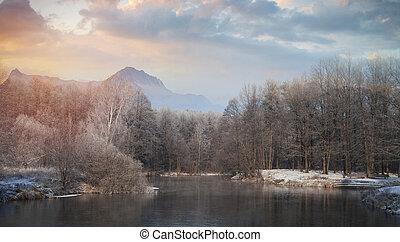 montagne, foresta, fondo