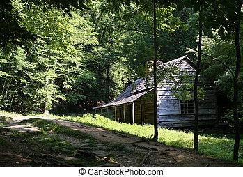 montagne, fumoso, capanna di tronchi