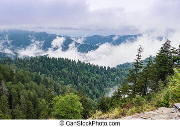 montagne, grande, fumoso