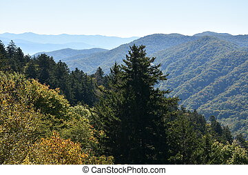 montagne, grande, parco, fumoso, nazionale