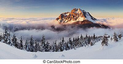 montagne, hiver, landcape, nature