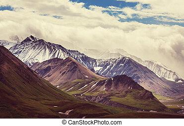 montagne, in, alaska
