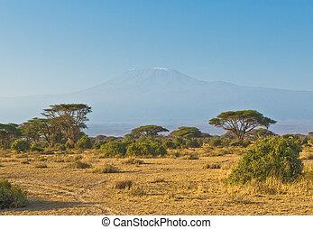 montagne, kilimanjaro, levers de soleil