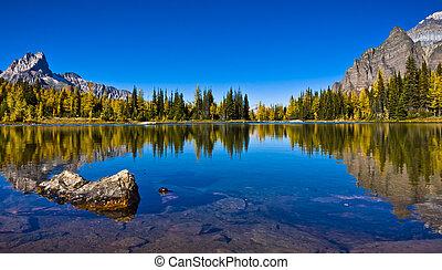 Fonds d&#39-ecran 2560x1440 Canada Parc Montagnes Lac Forets ...