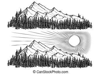 montagne, loro, conifero, sole, mano, vettore, foresta, illustrazioni, disegnato