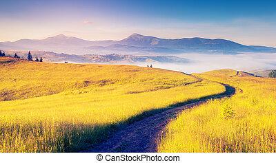 montagne, magie, paysage