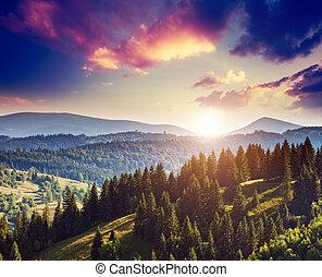 montagne, magique, paysage