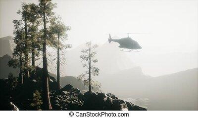 montagne, mouvement, forêt, hélicoptère, voler, extrême, lent