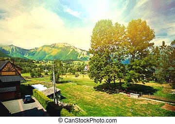 montagne, natura