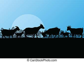 montagne, nature, campagne, illustration, troupeau, ferme, vecteur, laitage, forêt, fond, sauvage, chèvres, paysage