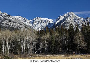 montagne, nazionale, parco, roccioso,  Banff