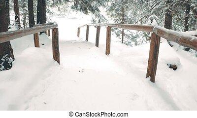 montagne, neige, piste, en mouvement, forêt, traîneau, cheval-dessiné