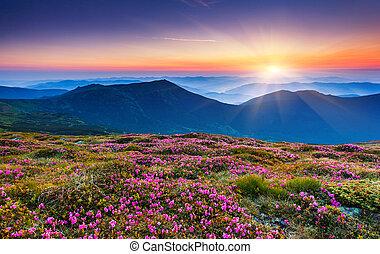 montagne, paesaggio
