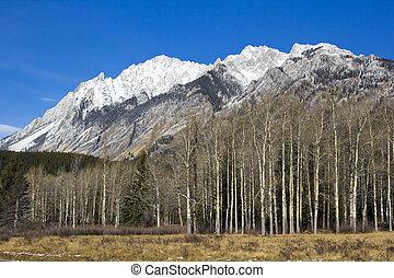 montagne, parco nazionale, roccioso, banff