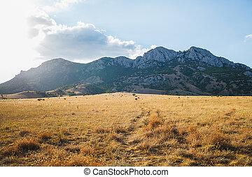 montagne, piombi, attraverso, secco, percorso, erba