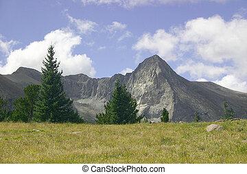 montagne, prés