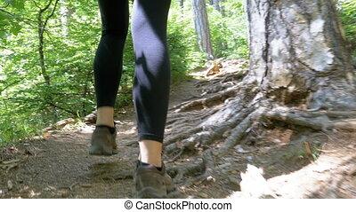 montagne, randonnée femme, pieds, piste, forêt, voyageur, sentier, vue