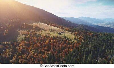 montagne, rare, pré, lumière soleil, lit, maisons, vert, ...